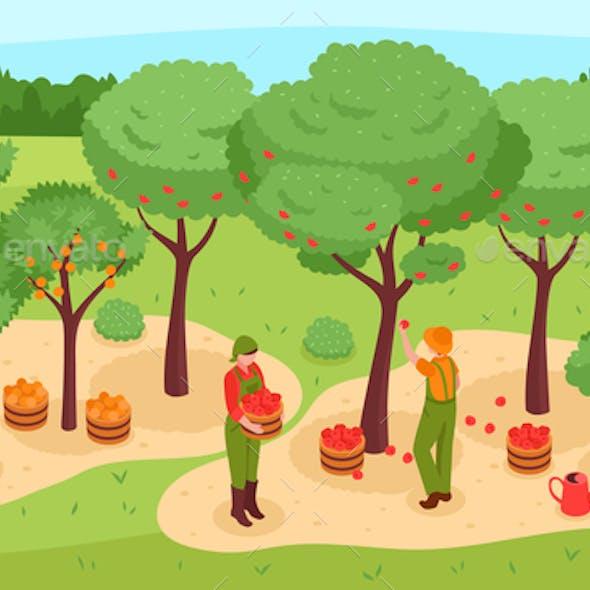 Gardening Isometric Illustration
