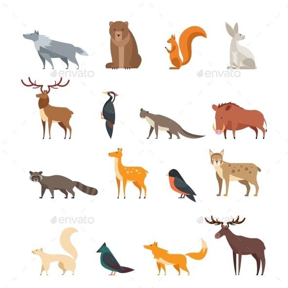 Forest Wild Animals and Birds Cartoon Vector Set