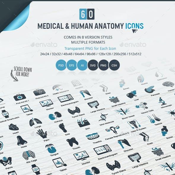 Medical & Human Anatomy Icons Set