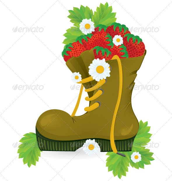 Strawberries old shoe and daisy flowers - Objects Vectors