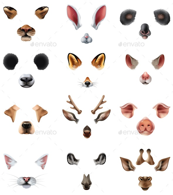 Animal Masks Video Chat Application Effect Filters Set - Animals Characters