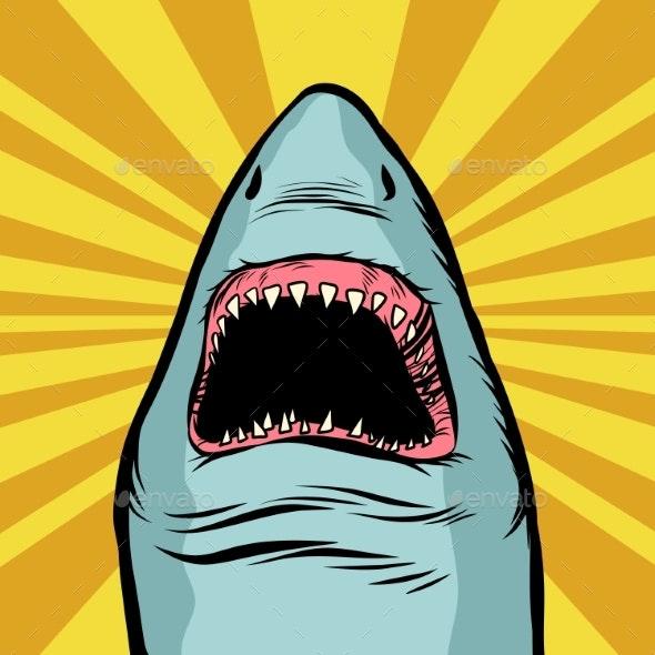Shark Ocean Predator - Animals Characters