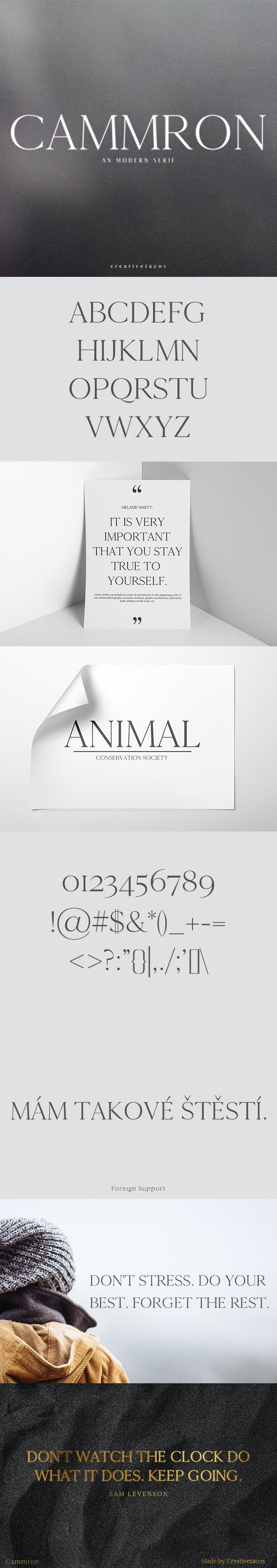 Cammron Serif Font Family - Serif Fonts