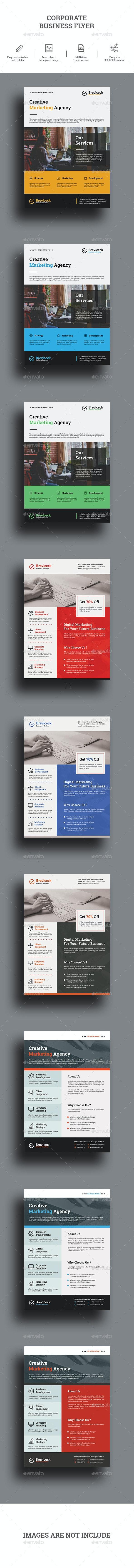 Corporate Flyer Bundle - Corporate Brochures