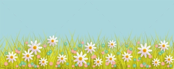 Spring Background with Grass and Flowers Border - Flowers & Plants Nature