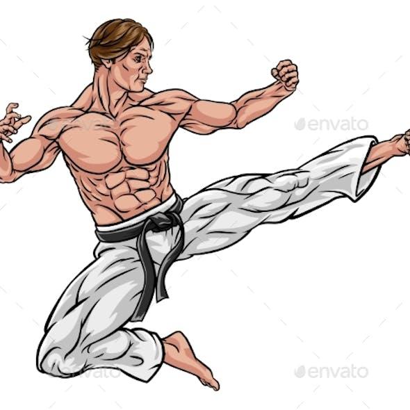 Karate or Kung Fu Flying Kick