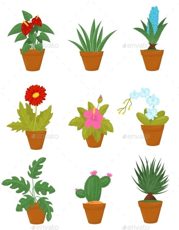 Flat Vector Set of Indoor Plants in Brown Ceramic - Flowers & Plants Nature