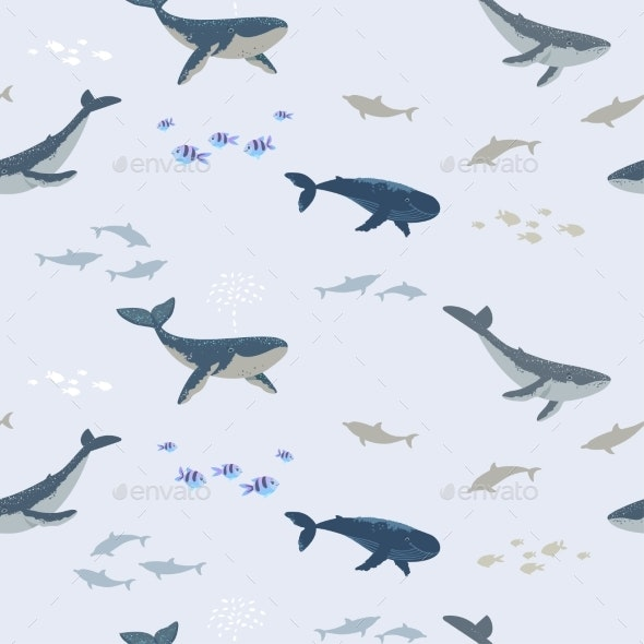 Whales - Animals Characters
