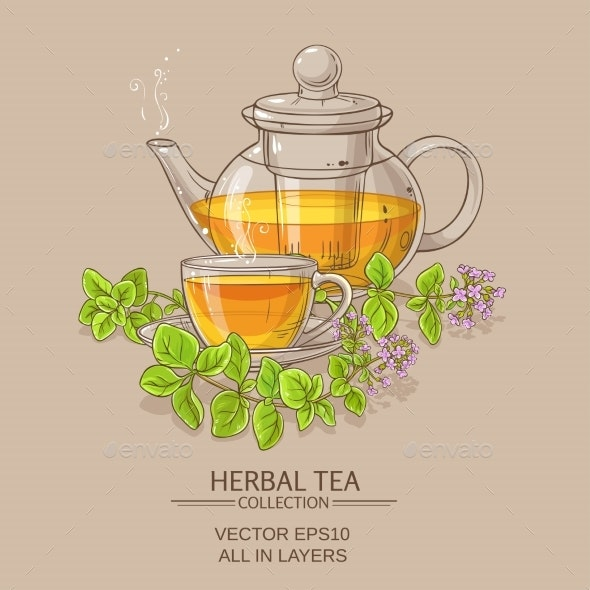 Cup of Oregano Tea in Teapot - Food Objects
