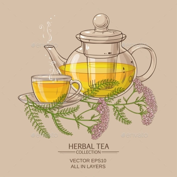 Cup of Yarrow Tea and Teapot - Food Objects