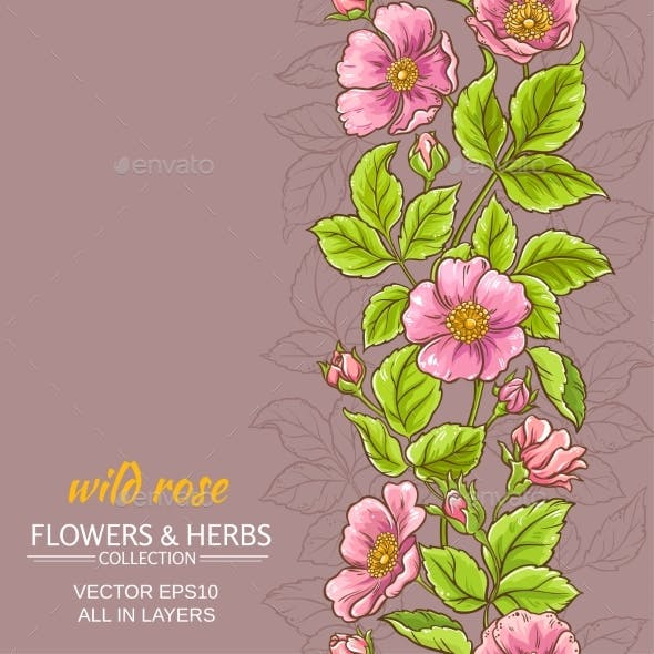 Wild Rose Flowers Background