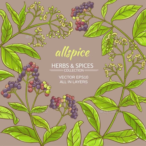 Allspice Vector Frame - Food Objects
