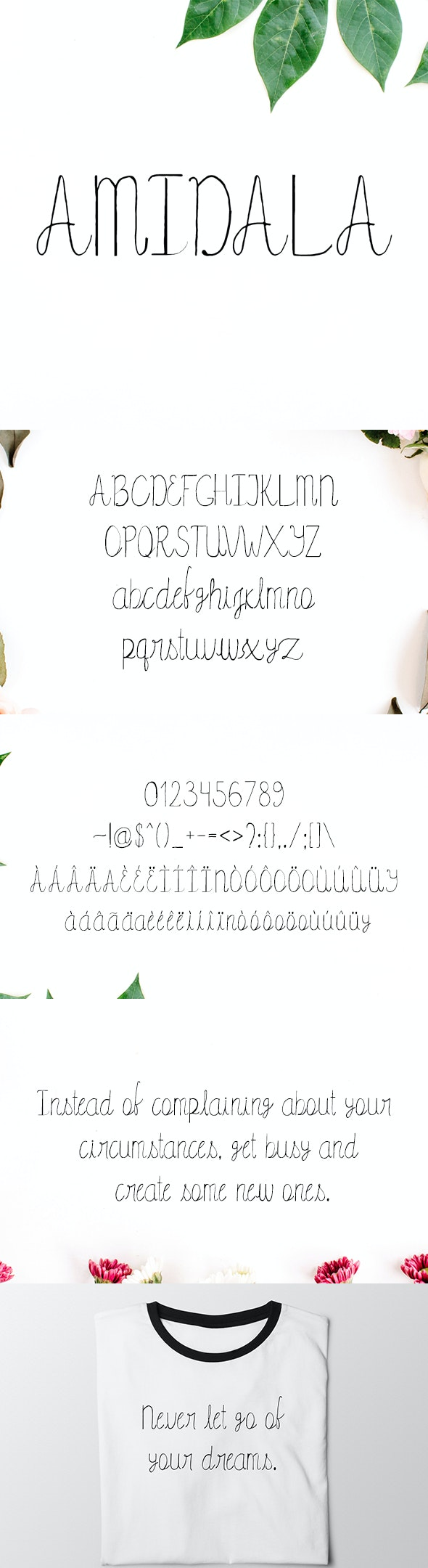 Amidala Script Font - Hand-writing Script