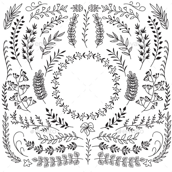 Hand Drawn Branches with Leaves. Decorative Floral - Web Elements Vectors