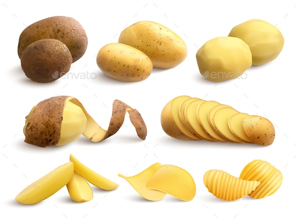 Raw and Fried Potato Realistic Set - Food Objects