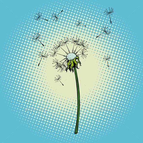 Dandelion Flower Fluff in the Wind - Flowers & Plants Nature