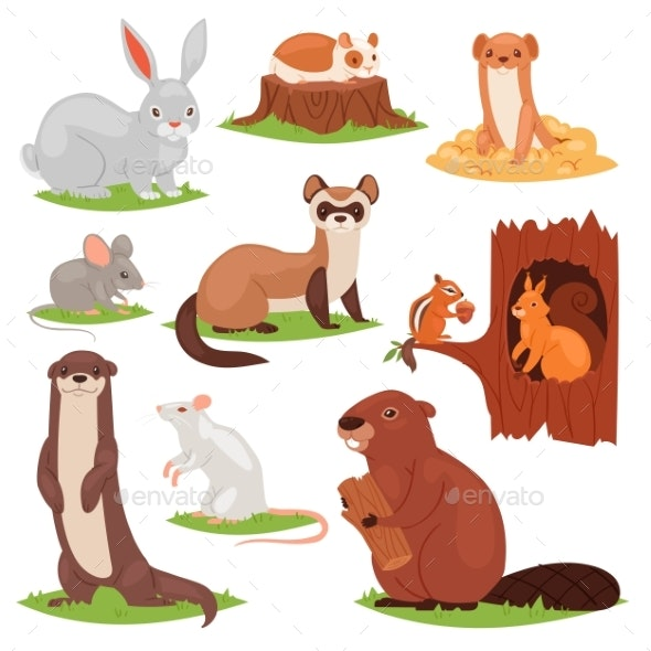 Forest Animals Vector Cartoon Animalistic - Animals Characters