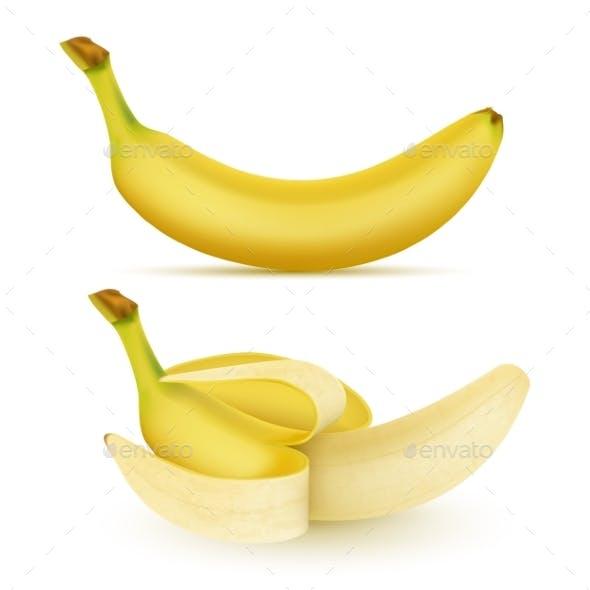Vector Realistic Yellow Banana Set
