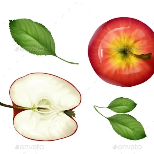 Vector Realistic Apples