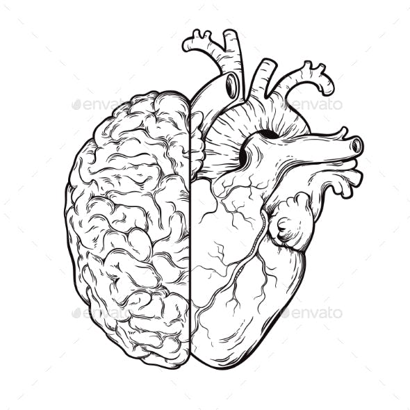 Human Brain and Heart Halves - Logic and Emotion