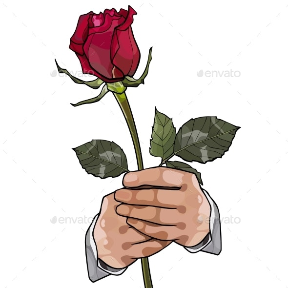 Painted Red Rose in the Hands of a Man - Flowers & Plants Nature