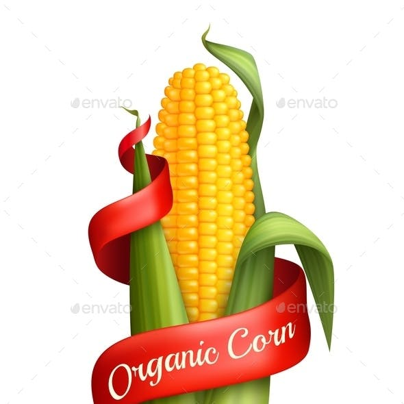 Realistic Corn with Ribbon
