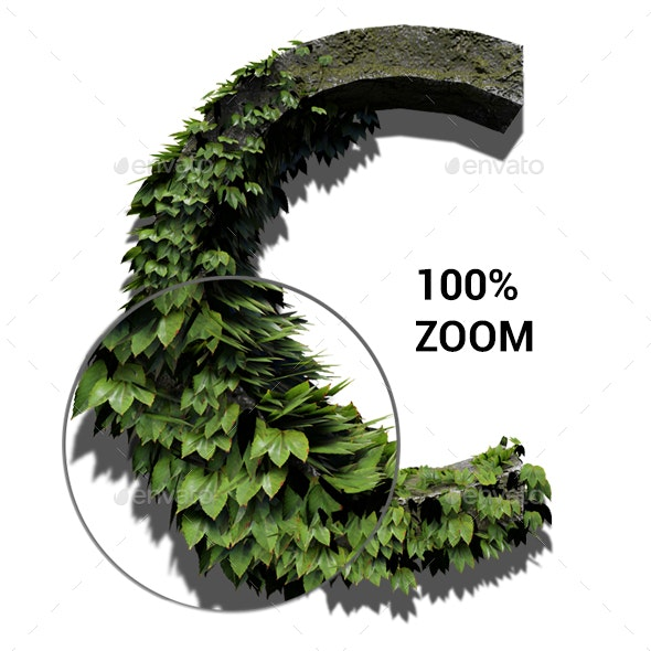 Foliage Stone Letters - Text 3D Renders