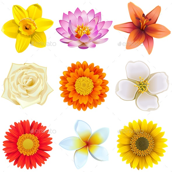 Vector Flower Icons Set 2 - Flowers & Plants Nature