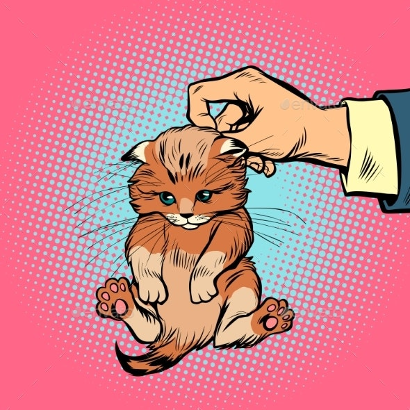 Hand Holds Kitten By the Scruff - Animals Characters