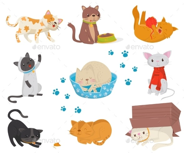 Flat Vector Set with Cats Cartoon - Animals Characters