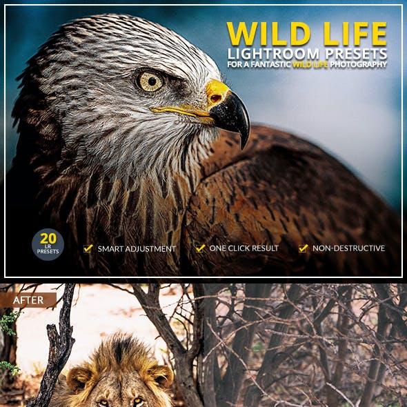20 Wild Life Lightroom Presets