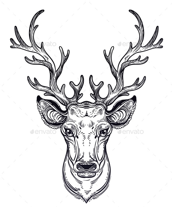 Deer Head - Animals Characters