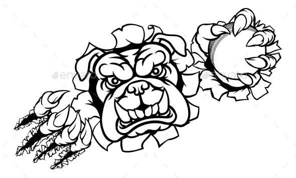 Bulldog Cricket Sports Mascot - Sports/Activity Conceptual