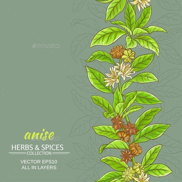 Anise Vector Background - Food Objects