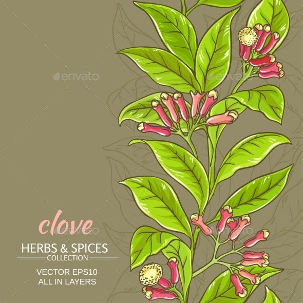 Clove Vector Background - Flowers & Plants Nature
