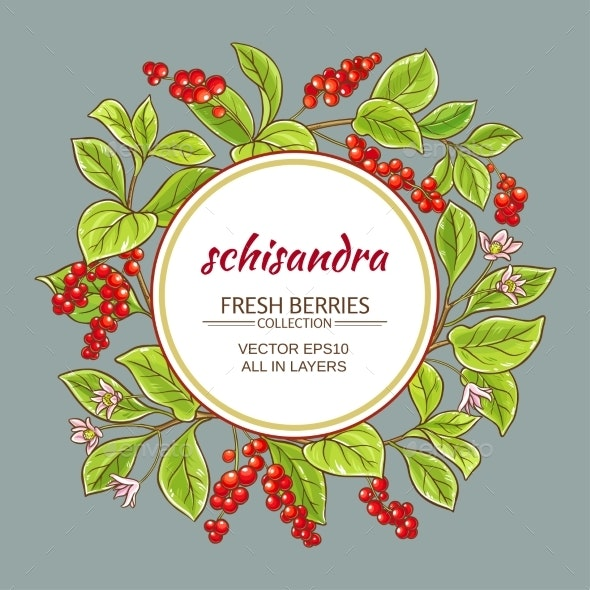 Schisandra Vector Frame - Food Objects