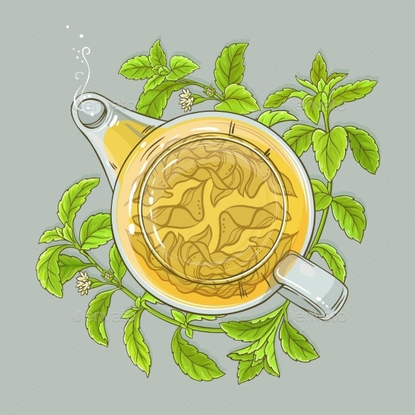 Stevia Tea Illustration - Food Objects