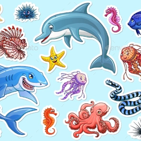Set of Marine Animals Colorful on White
