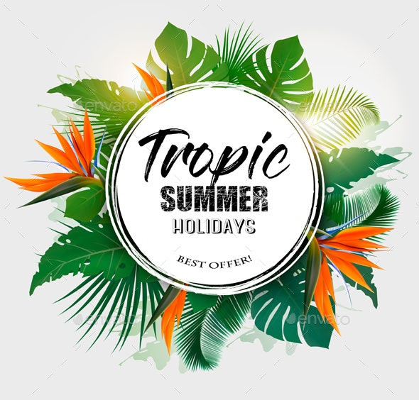 Summer Holiday Background With Tropical Plants - Seasons Nature