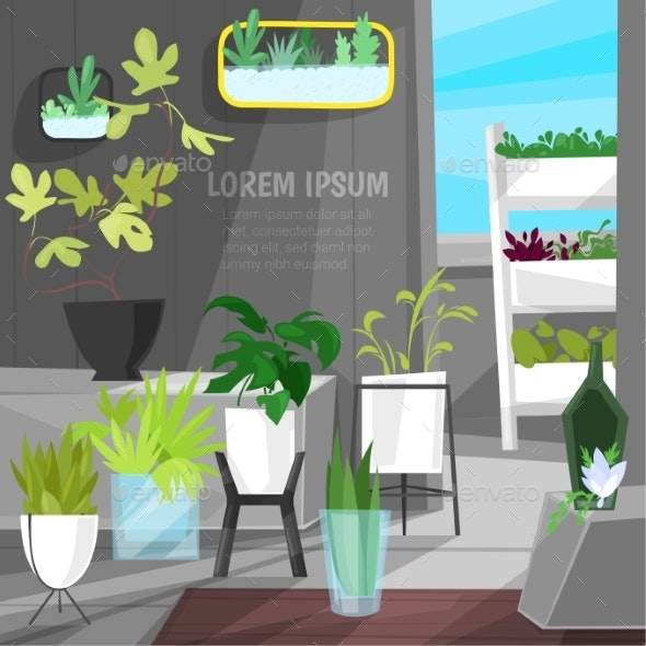 Plants in Flowerpots Vector Potted Houseplants - Flowers & Plants Nature