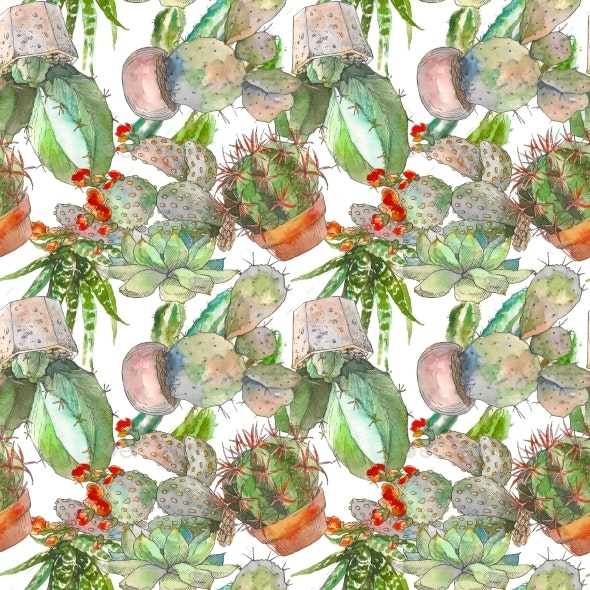 Seamless Pattern with Cactus and Succulents - Backgrounds Graphics