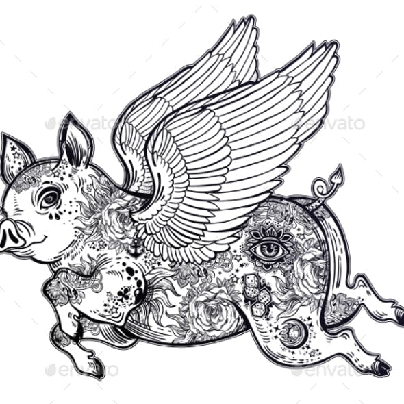 Flying Winged Pig