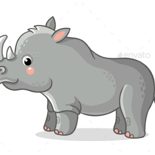 Rhinoceros Stands on a White Background