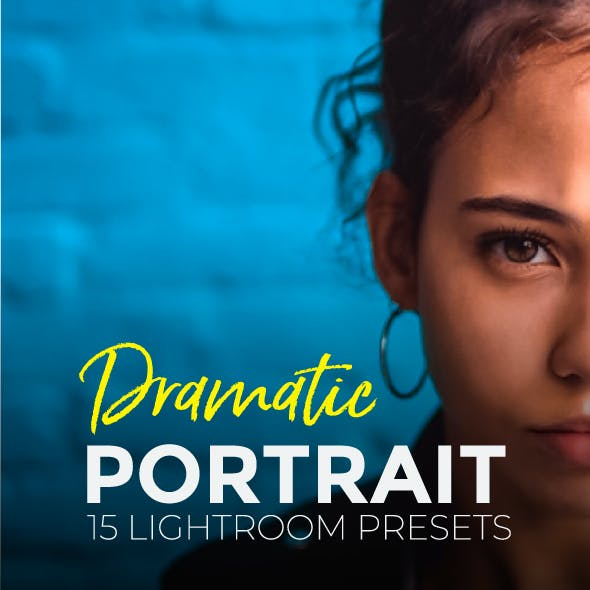15 Pro Portrait Lightroom Presets