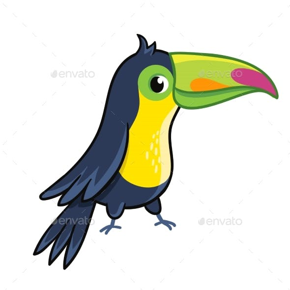 Toucan on White Background