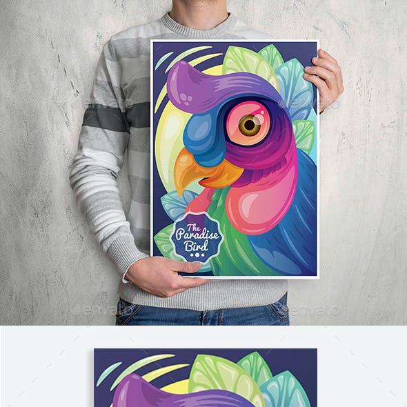 Paradise Bird Illustrations