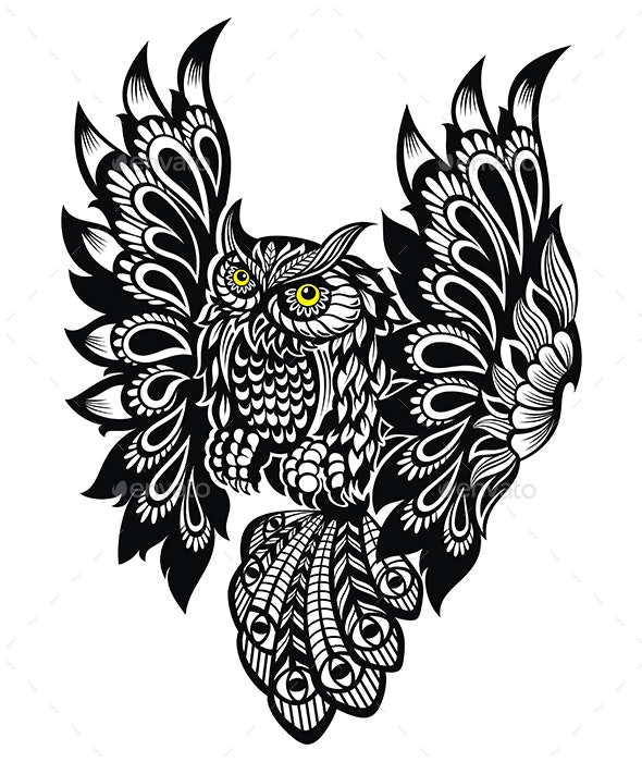 Owl Bird - Animals Characters