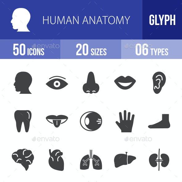 Human Anatomy Glyph Icons