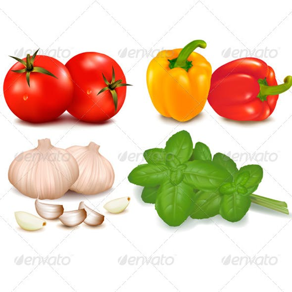 Colorful Collection of Vegetables