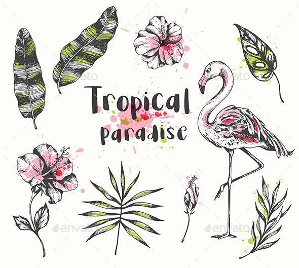 Summer Tropical Design Elements - Animals Characters
